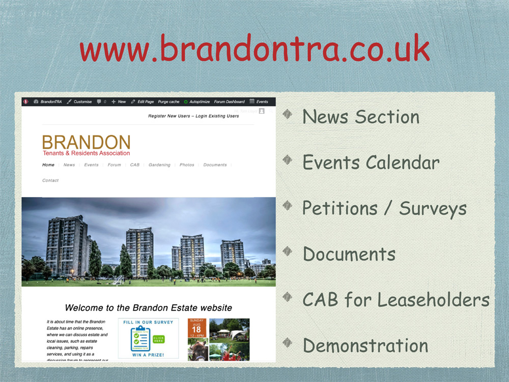 brandon-1-tra-chairs-report-2019