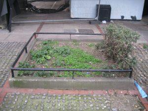 Planting Squares Brandon Estate